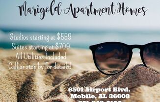 Marigold Apartments 6501 Airport Blvd