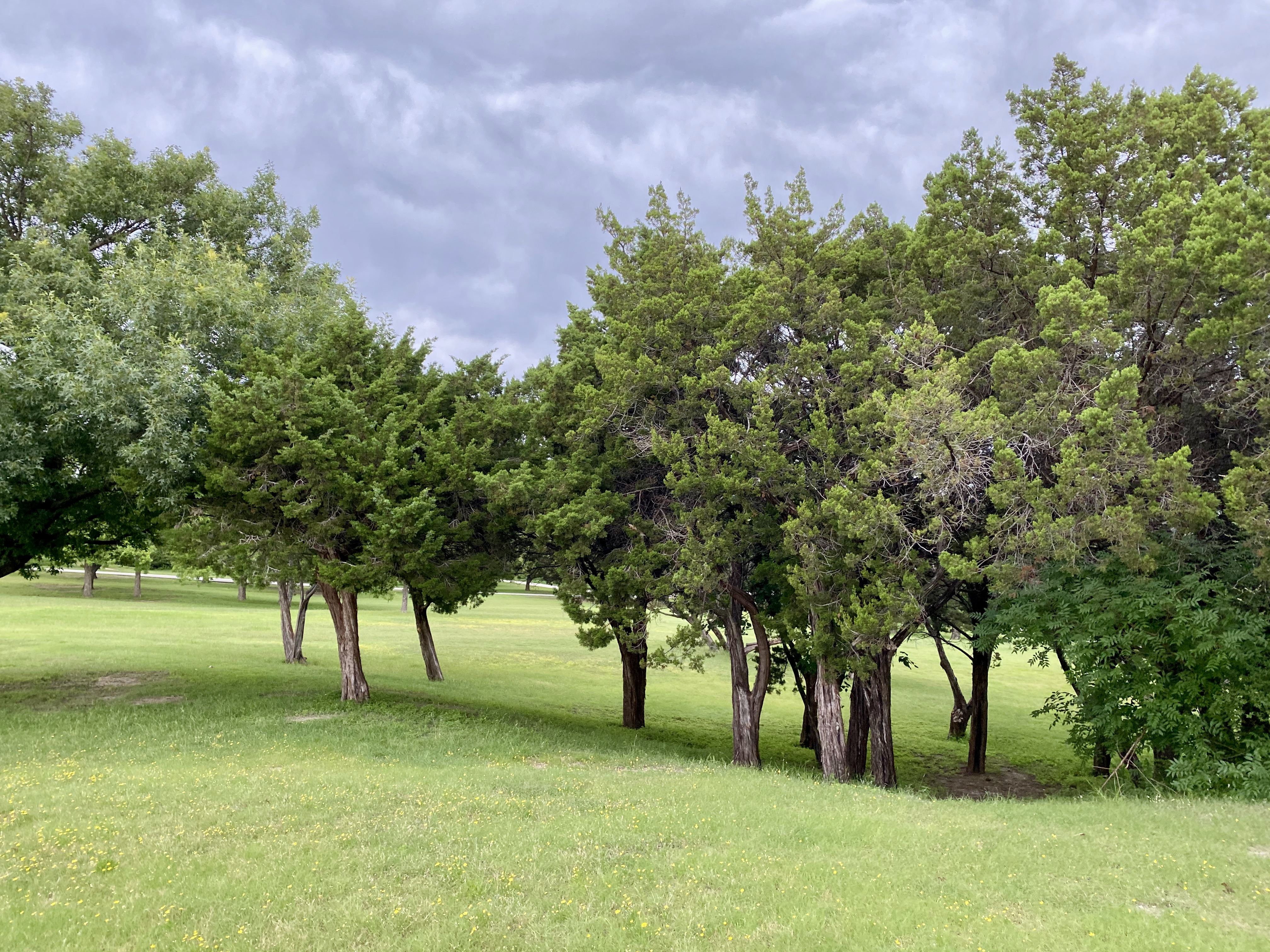 Flag Pole Hill Park in Lake Highlands, Dallas, TX