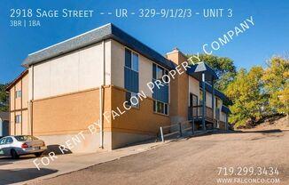 2918 Sage Street  - - UR - 329-9/1/2/3