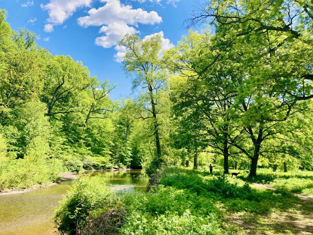 Pennypack Park in Northeast Philadelphia