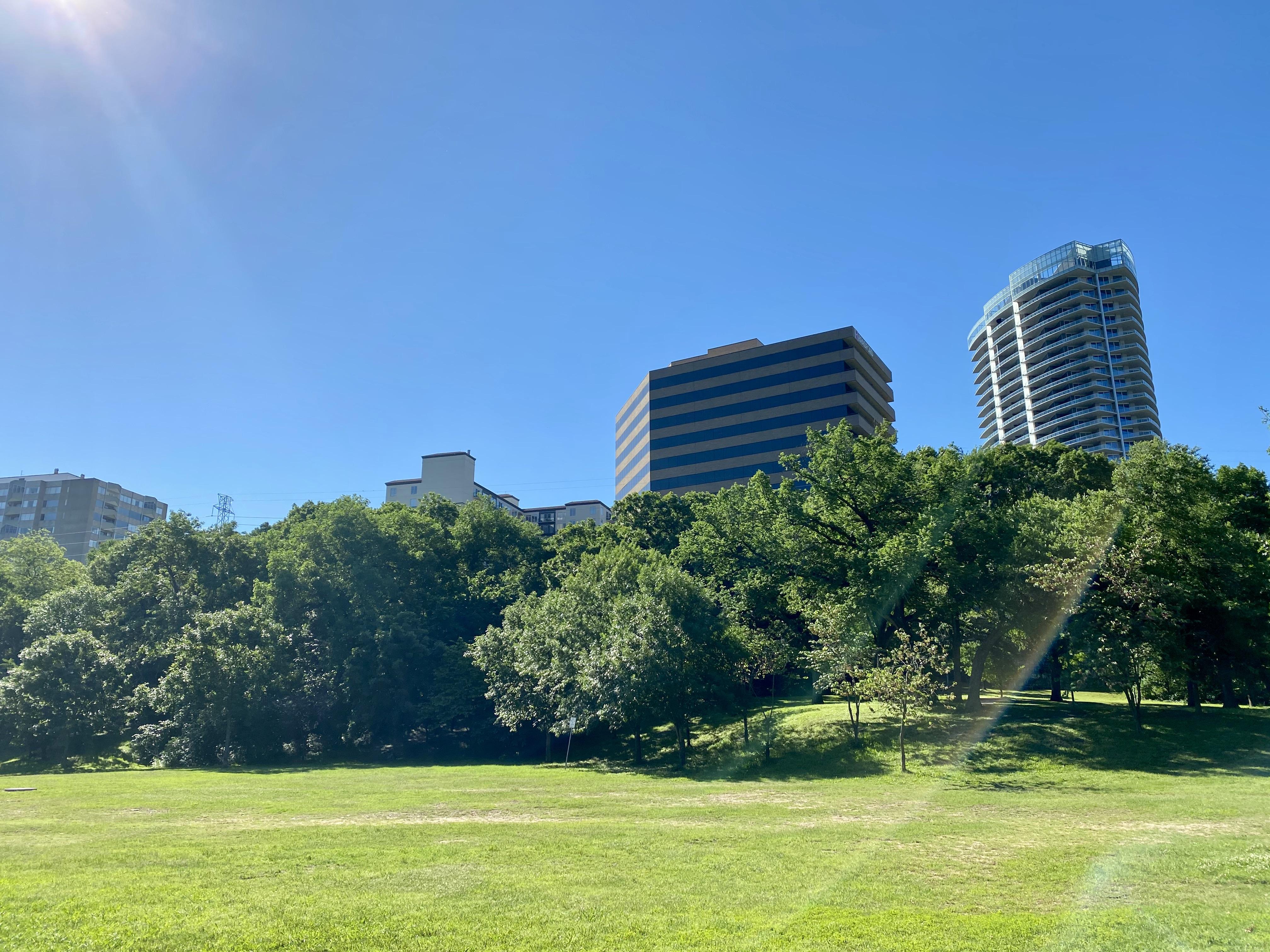Reverchon Park and Uptown Highrises