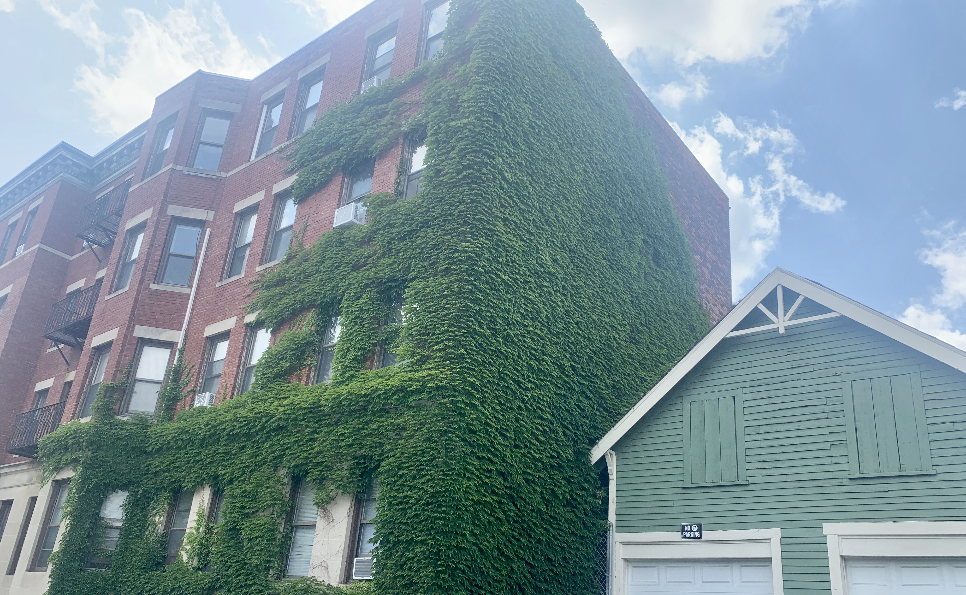 Reedsdale St Apartments near Commonwealth in Allston, MA