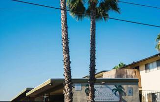 Palms of La Mesa