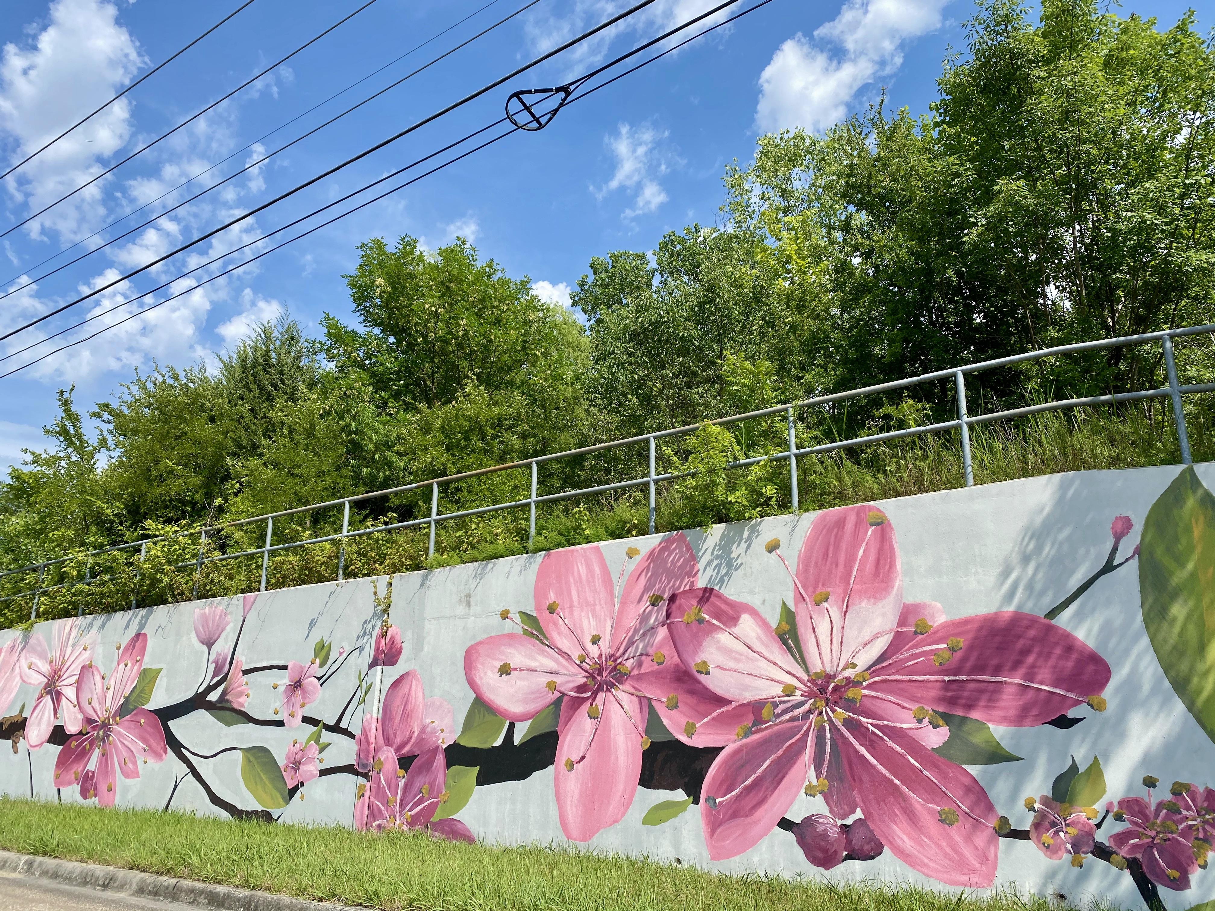 Randol Mill Road Murals in Woodhaven, TX